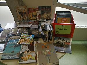 Expo : Préhistoire | Médiathèque départementale du Doubs. Auteur
